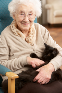Pet Will Elderly Parents in North San Diego County