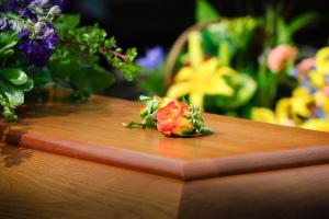 Senior Grief Solutions